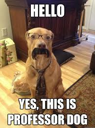 hello this is dog. hello yes, this is professor dog hello this is dog