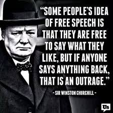 Freedom Of Speech Quotes Enchanting Freedom To Repost Some People Get Me Pinterest Winston
