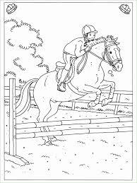 Kleurplaten Over Paarden