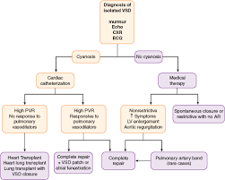 Pathophysiology Of Ventricular Septal Defect In Flow Chart Ventricular Septal Defects Johns Hopkins Textbook Of