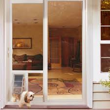 imposing sliding door pet photos inspirations hale doors san antonio electric dogcat