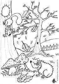 Kleurplaat Herfst Egel En Eekhoorn Afb 6444 Images