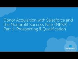 Donor Acquisition With Salesforce And The Nonprofit Success Pack Npsp Prospecting Qualification