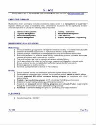 Professional Resume Summary Examples Example Of Resume Summary Fresh Examples Professional For Templates 20