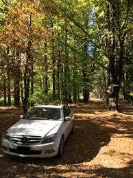 Alpine Park Alpine Park Riverside Cottages Deals Reviews Bright Aus Wotif