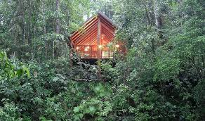 The Canopy Treehouses Is A Unique Australian Ecoaccredited ResortThe Canopy Treehouses