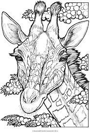 Small Picture 34 best Coloring Books free pages images on Pinterest