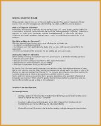 General Resume Objective Enchanting 60 Awesome General Resume Objective Statements Photographs