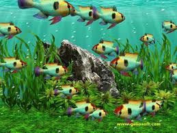 moving fish wallpaper windows 7. To Moving Fish Wallpaper Windows