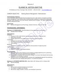 Resumes Resume Format For Banking Finance Job Bank Clerk Objective