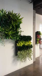 Looking for a Green-wall or Vertical garden in your space? Contact  PlantFinderPro to