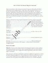 6 Resume Templates Objective Statement Budget Reporting