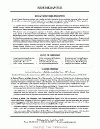Top Cv For Human Resource Position Hr Manager Resume Resume