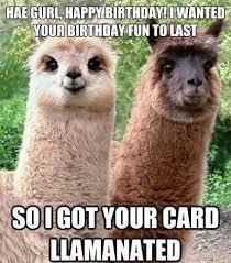 Happy Birthday Funny Quotes Custom 48 Happy Birthday To Me Quotes Prayers Images Memes ILove