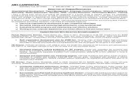 Audit Director Cover Letter Noithat190 Co