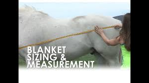 How To Measure For Horse Blanket Size Fit