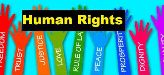 list of human rights violation in essay pdf education human rights