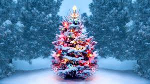 History of <b>Christmas Trees</b> - HISTORY