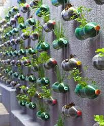 how to make a vertical garden. Plain Make Cut A Gap Into One Side Of The Bottle Make Hole On Each  Gap Push Strong Wires Through Holes And Hang Bottles Garden Wall Throughout How To Make A Vertical Garden O