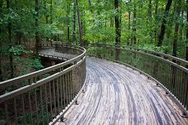 garvan woodland gardens hot springs arkansas if you re visiting little rock