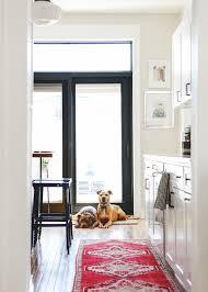 animal friendly furniture. Great Animal Friendly Furniture. Furniture