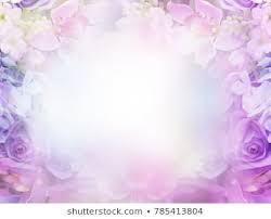 Purple Flowers Backgrounds Purple Flowers Background Images Stock Photos Vectors