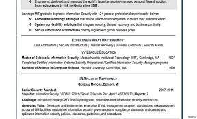 Pretty Dollar General Resume Photos Entry Level Resume Templates