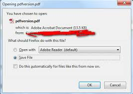 How to force a Download File prompt instead of displaying it in ...