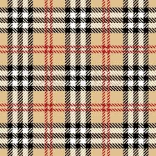 Plaid Pattern Enchanting Plaid Pattern Stock Vector Colourbox
