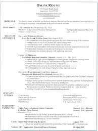 Resumes Online Extraordinary Resumes Online Templates Minimal Professional Resume On Line White