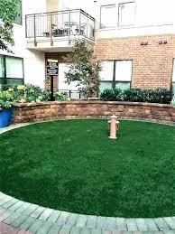 porch potty with drain dog area patio system unique best pet relief diy