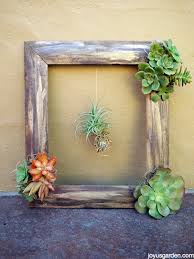 on wall art old picture frames with picture of diy wall art from an old frame and succulents 7