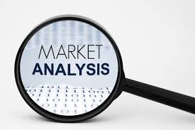 Market Analysis Market Analysis For Startups Step By Step Ingenious Zone 13