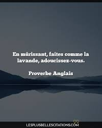 Anglais Citations Et Proverbes Les Plus Belles Citations