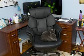 comfortable office. Large Size Of Chair:most Comfortable Office Chair Home Chairs Without Wheels Best Mesh