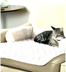 couch protector for dogs bed protector for pets couch protector for dogs pet chair covers pet