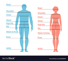 Woman And Girl Size Chart Human Front Side