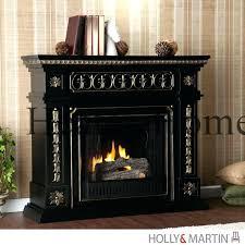 gel fireplace reviews gel burning fireplace fuel insert firebox reviews fireplaces gel burning fireplace fuel fireplaces