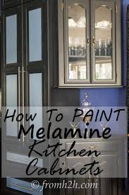 Interior Fittings For Kitchen Cupboards 17 Best Ideas About Melamine Cabinets On Pinterest Laminate