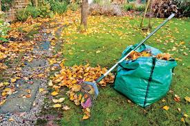 Fall Lawn Care Tips  Winter Lawn Care ...