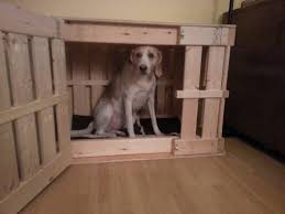 homemade wooden dog crate whatcha making