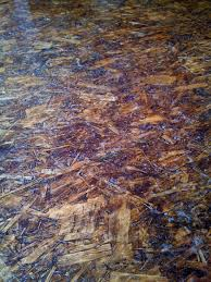 osb sheets as flooring sanded stained and polyurethaned