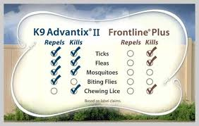 frontline plus vs advantix. Simple Frontline Frontline Vs Advantix K9 Plus Input Wanted And T