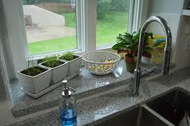 Kitchen Windowsill Herb Garden Houseplant Hang Ups Loving Here