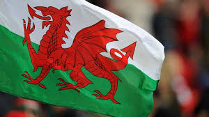 Image result for welsh flag