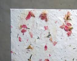 Biodegradable Paper With Flower Seeds Seed Paper Etsy