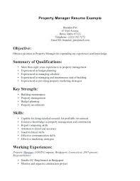 Example Of Resume Summary Resume Summary Good Example Of Skills For