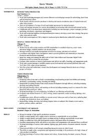 Video Production Resume Samples Video Producer Resume Ten Ideas To Organize Your Own Video