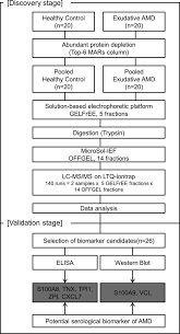 Plasma Pay Chart Flow Chart Of The Proteomic Analysis Of Plasma Samples With