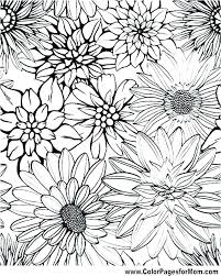 sunflower printable coloring pages flower color pages free flowers coloring pages free printable color pages of